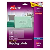 "Avery Clear Easy Peel Shipping Labels for Inkjet Printers 2"" x 4"", Pack of 250 (8663)"
