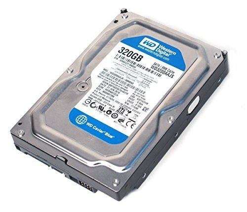 Western Digital (WD) Caviar Blue 320 GB (320gb) SATA II 7200 RPM 8 MB Cache Bulk/OEM Desktop Hard Drive for PC, Mac, CCTV DVR, NAS, RAID- 1 Year Warranty