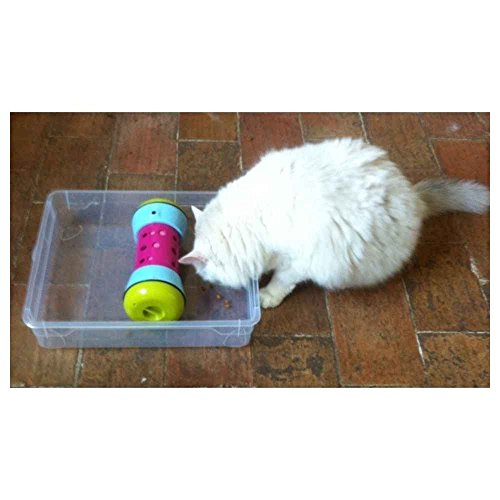 Amazon.com : PIPOLINO-M - White - Mobile Food Dispenser for Well-being and Health of Cats : Pet Supplies