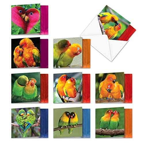 Love Birds - Box of 10 All-Occasion Romantic Blank Cards with Envelopes (4 x 5.12 Inch) - Bulk Lovebirds Note Card Bundle - All Occasion Beauty of Nature Notecard Set MQ4628OCB-B1x10 ()