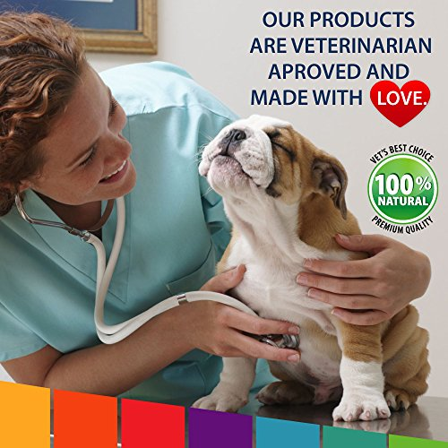 Cheapest Probiotics for Dogs together with and organic Enzymes Digestive help support for Dogs Improves Upset Stomach Gas Bad Breath Constipation Gut Flora and Intestinal Tract 75 Bill CFUs and organic Chews 60 chews Check this out