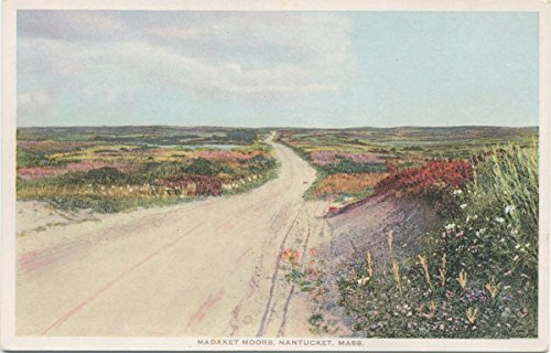 Historic Pictoric Postcard Print | Madaket Moors, Nantucket, Mass, 1898 | Vintage Fine Art ()
