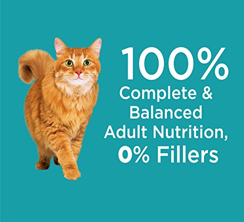 Iams PROACTIVE HEALTH Indoor Weight and Hairball Care Dry Cat Food, (1) 22 Pound Bag, Real Chicken in Every Bite by Iams (Image #7)