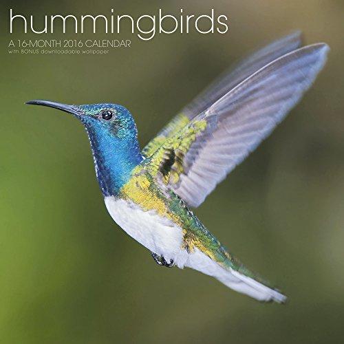 UPC 038576412163, Hummingbirds Wall Calendar (2016)