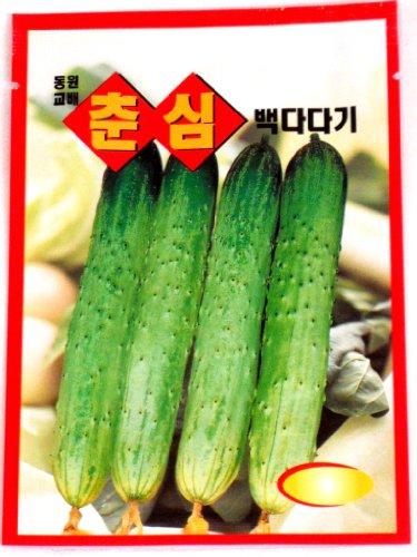 Cucumber Seeds Korean 2pack