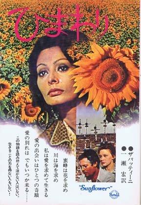 ひまわり (1974年)