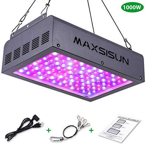 1000 Led Light Review in US - 7