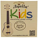 Aquila Acoustic Guitar Strings Review and Comparison