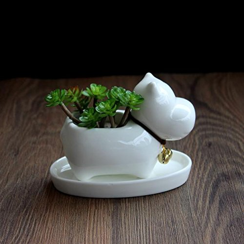 - Cute Animal Hippo Shaped Cartoon Ceramic Succulent Cactus Vase Flower Pot (Plant Not Included)