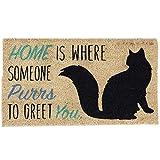 Heart of America Home Cat Doormat