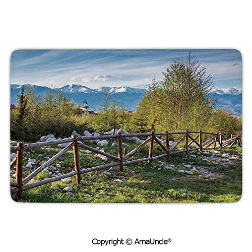 Town Food Service Manual Range - 3D Printed Floor Rugs,Farm House Decor,Idyllic Scene with Tree Trunk Plank and Snow Mountain Range The Alps Photo,Green Blue Pattern,L19.7xW31.5 Inches,Doormats for Living Room Bathroom Bedroom