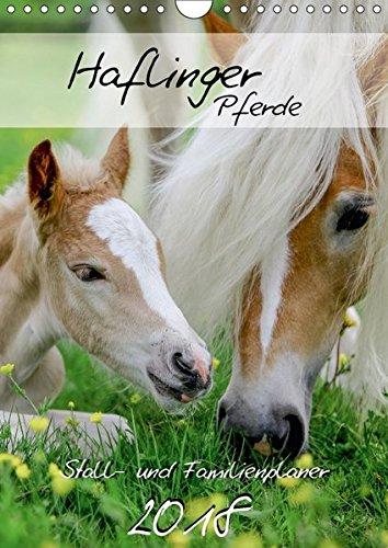 Haflinger Pferde - Stall- und Familienplaner 2018 (Wandkalender 2018 DIN A4 hoch): Stallplaner und Familienplaner - alle Termine im Blick mit ... ... [Apr 01, 2017] Natural-Golden.de, k.A.