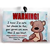 Wash Your Hands 6 x 4 inch Laminated Baby Sign by Cold Snap Studio - Handmade in The USA!