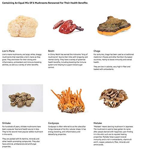 Suppléments à base de 6 champignons – Reishi, Lions Mane, Cordyceps, Chaga, Shitake & Maitake. 120 Capsules. Formule à Forte Teneur pour Le Renforcement du Système Immunitaire et Le Bien-Être