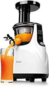 NUC Special Galaxy Slow Juicer Fruit Vegetable Extractor Blender Ice Cream Maker Chopping 220V
