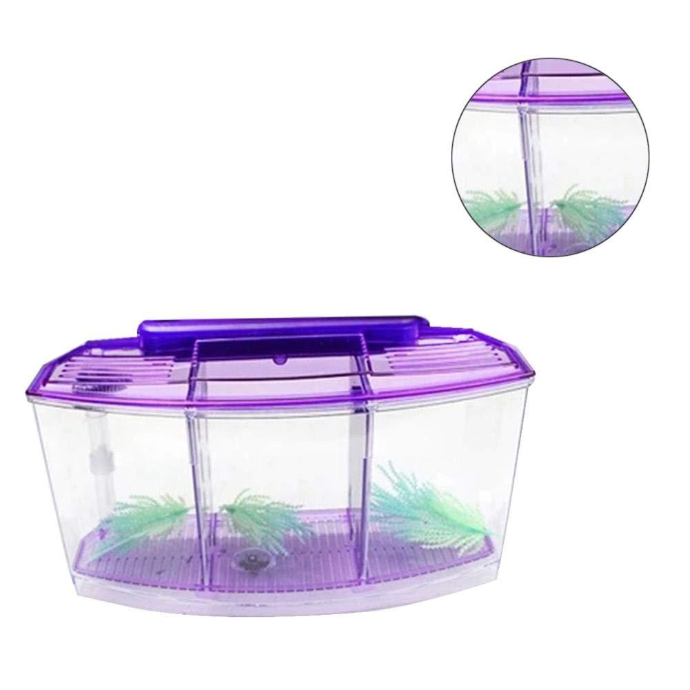 suitus88 Mini Fishing Tank, LED Light Aquarium Acrylic Three Zones Isolation Hatch for Goldfish Betta Small Tropical Fish