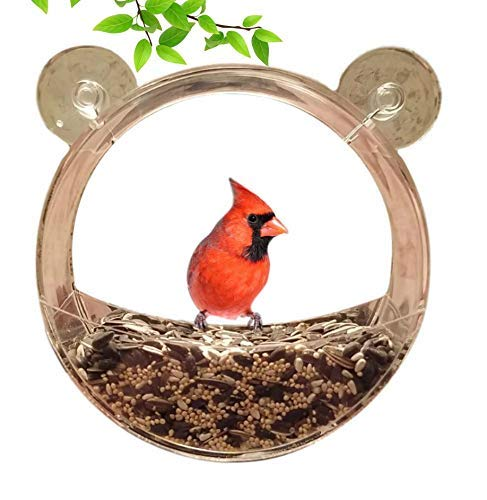 Clark Family Premium Clear Window Bird Feeder - Clear Acrylic Extra Large Bird Feeder - Unique Round Design - Extra Strong Suction Cups - Squirrel & Weatherproof - Great Gift Idea!