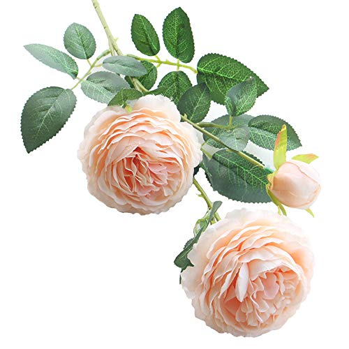 (Artfen 5 Pack 3 Heads Artificial Silk European Rose Flower Peony Flower Long Stem Fake Plastic Flowers Home Garden Party Wedding Decoration DIY Wreath Approx 26'' High Champagne)