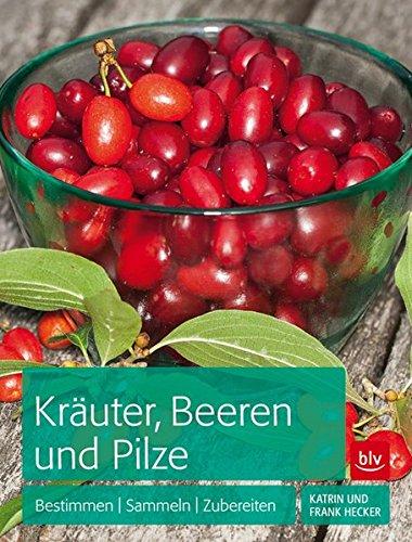 Kräuter, Beeren und Pilze: Bestimmen Sammeln Zubereiten