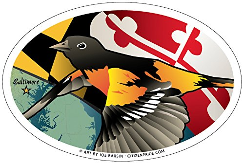 Citizen Pride Maryland Oriole Oval Magnet, 6 x 4 inches - Euro Car Fridge Locker Vinyl Magnet