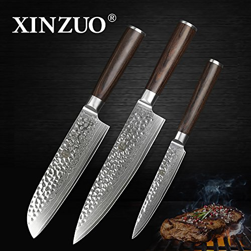XINZUO 3PC Damascus Kitchen Knife Set Chef Knife Slicing Hammered Forging Damascus Kitchen Knife Very Sharp Gyutou Knife Professional Chef's Knife Cultery Santoku Knife with Pakka Wood Handle by XINZUO