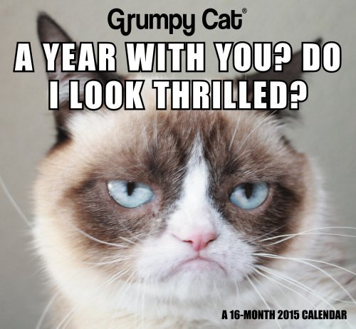 Read Online By Day Dream Grumpy Cat Mini Calendar (2015) (Min) [Calendar] pdf epub