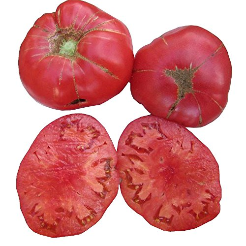 (German Johnson Tomato Seeds by Pepper Joe's - 20+ Tomato Seeds Per Pack)