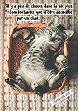 agenda des chats 2019 din a5 il y a peu de choses dans la vie plus r?confortantes que d ?tre accueillie par un chat agenda organiseur pour ton chats chatons 2019 french edition