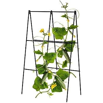 Amazon.com : Gardener\'s Supply Company Bean Tower, Heavy Gauge Bean ...