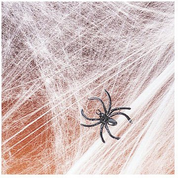 Fun Express Stretchable Spider Web with Spider