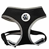 Best Four Paws Dog Harness For Cars - Black Mesh Soft Dog Harness Safe Harness No Review