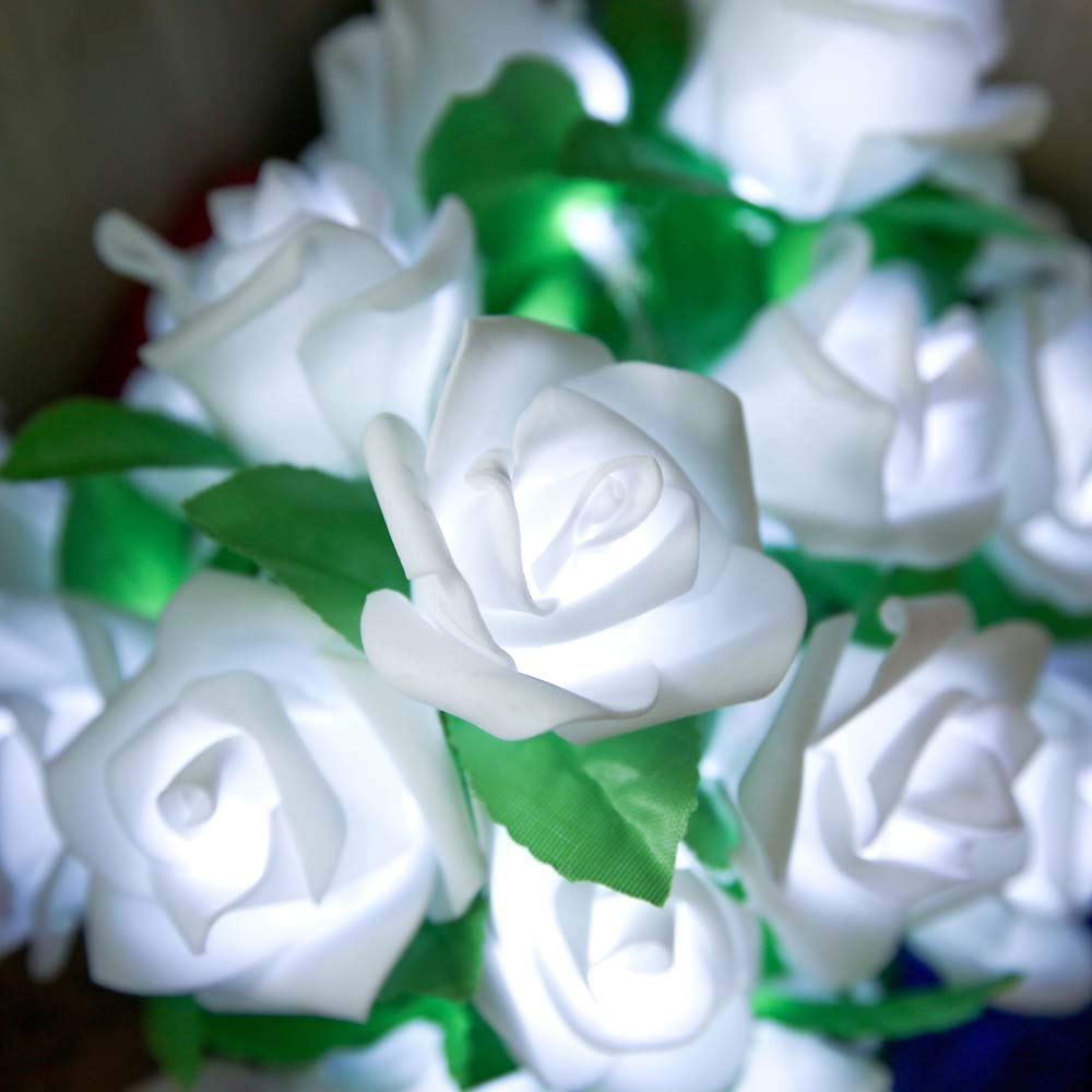 Hupoop - Guirnalda de Luces LED para Ventana, diseño de Rosas, 10 ...