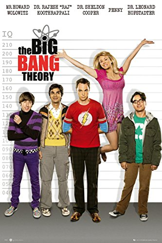 The Big Bang Theory Line Up Poster 24 X 36In