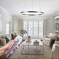 Diborui Ring Pendant Light Modern Round Shape Ceiling...