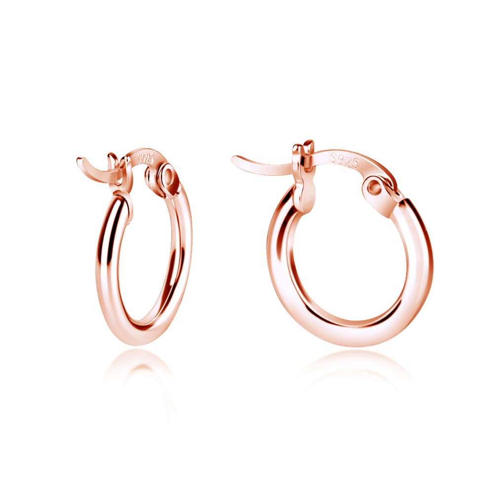 Sterling Silver Hoop Earrings, High Polished Round-Tube Small Hoop Earrings in 18K Gold Rose Gold Silver, 3 Size Rose Gold Earrings Earrings for Women Fashion Maxilei B07D9JLCHC_US
