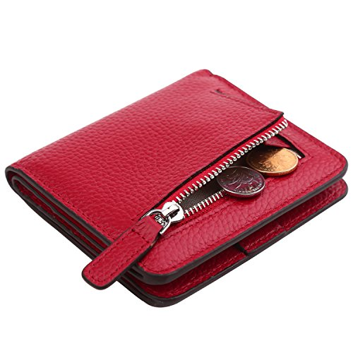 Dante Women's RFID Blocking Small Compact Bifold Leather Pocket Wallet Ladies Mini Purse(Pebble Wine Red)