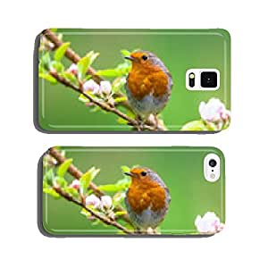Robin on a branch with white flowers cell phone cover case iPhone6 Plus