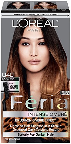 loreal-paris-feria-brush-on-intense-ombre-effect-hair-color-040-for-soft-black-to-black-hair