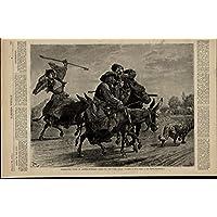 Austro-Hungary Mules Man Lighting Pipe Smoking 1873 great old print for display
