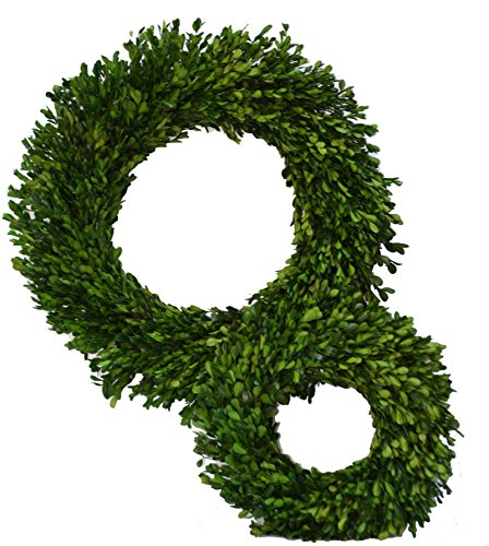 Cheap  Flora Decor Preserved Boxwood Wreath Set One 14