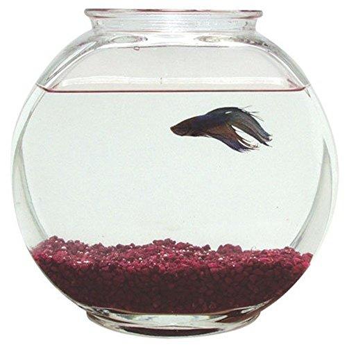 51qoR6gEOKL - Plastic Drum Fish Bowl - 1 Gal