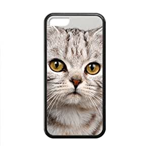 Lovely Adorable Cat Kitty Black Phone Case for Iphone 5C