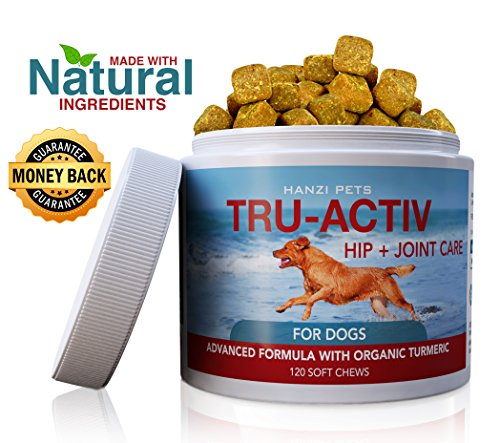 Hanzi Pets All Natural Hip & Joint Care Dogs | Improves Mobility & Hip Dysplasia | Glucosamine, MSM, Chondroitin, Turmeric | Antioxidants | cGMP Certified | Made in USA | 120 Savory Soft Chews