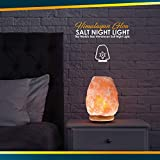 Himalayan Glow Natural Himalayan Salt Lamp, Crystal