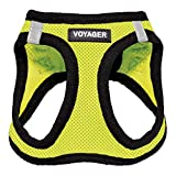 Voyager Step-in Air Dog Harness - All Weather Mesh, Step in Vest Harness for Small and Medium Dogs by Best Pet Supplies - Lime Green Base, L
