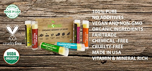 USDA-Organic-Lip-Balm-by-Sky-Organics--6-Pack-Assorted-Flavors--With-Beeswax-Coconut-Oil-Vitamin-E-Best-Lip-Plumper-Chapstick-for-Dry-Lips-For-Adults-and-Kids-Lip-Repair-Made-In-USA