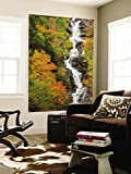 Silver Cascade Waterfall in White Mountains in Autumn, Crawford Notch State Park, New Hampshire Wall Mural by Jerry & Marcy Monkman 48 x 72in