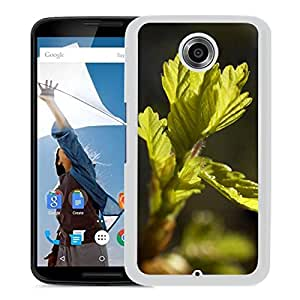 New Beautiful Custom Designed Cover Case For Google Nexus 6 With Spring Leaf Bud (2) Phone Case