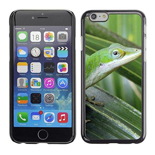 "Premio Sottile Slim Cassa Custodia Case Cover Shell // F00011644 lézard // Apple iPhone 6 6S 6G 4.7"""