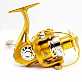 Tact-Pro Saltwater Fishing Reels, Open Face Spinning Reel Professional for Sea Fishing (BT6000)